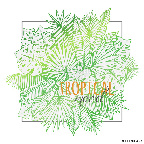 500x500 Beautiful Hand Drawn Tropical Lineart With Different Palm Leaves