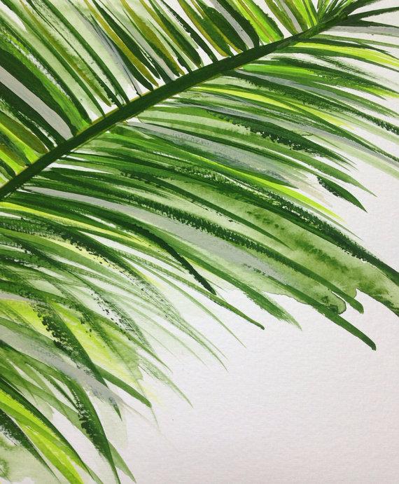 570x691 Drawn Mint Palm Branch Many Interesting Cliparts