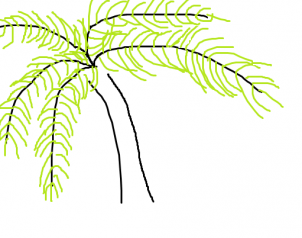 302x238 How To Draw How To Draw A Palm Tree Easy