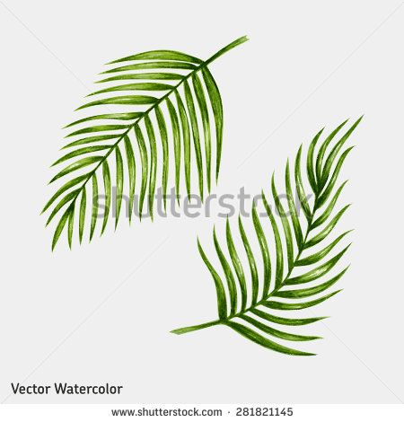 450x470 Watercolor Tropical Palm Leaves. Vector Illustration.