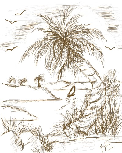 400x500 Drawing A Palm