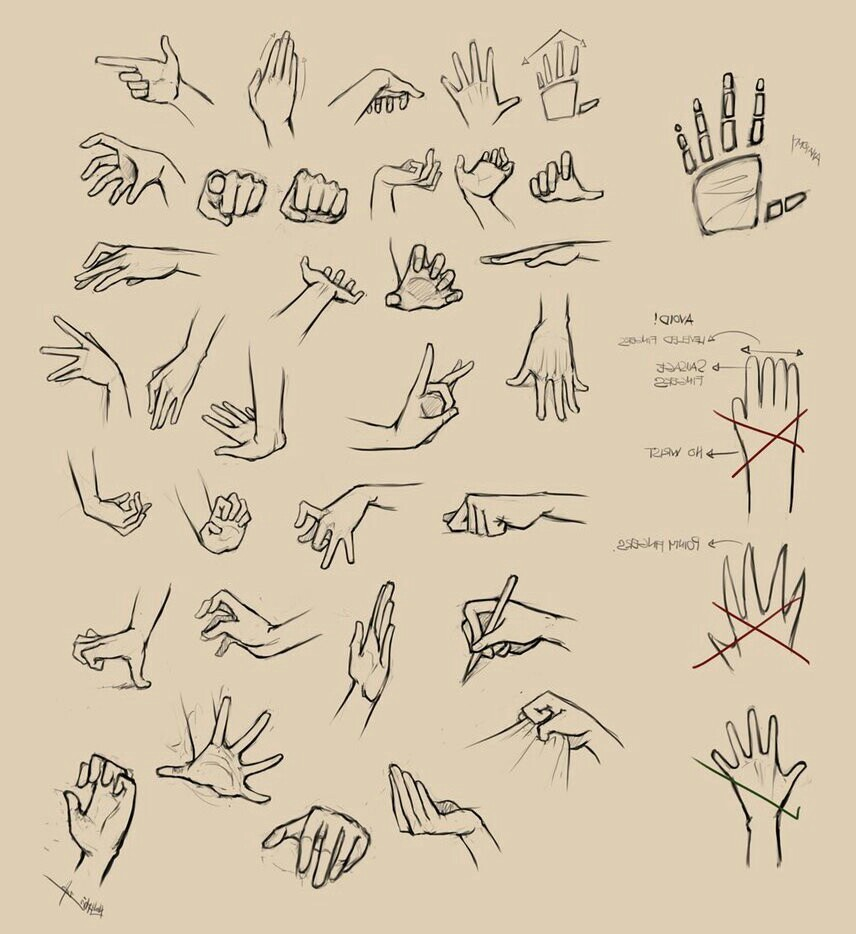 856x934 How To Draw Hands How To Draw Palmhandshoulder