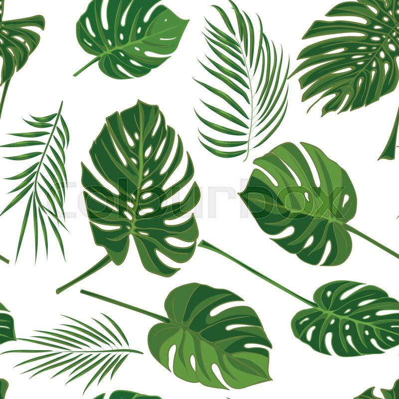 800x800 Seamless Hand Drawn Tropical Pattern With Palm Leaves In Green