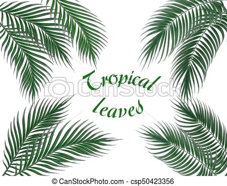 450x370 Tropical Dark Green Palm Leaves On Four Sides. Set . Clipart