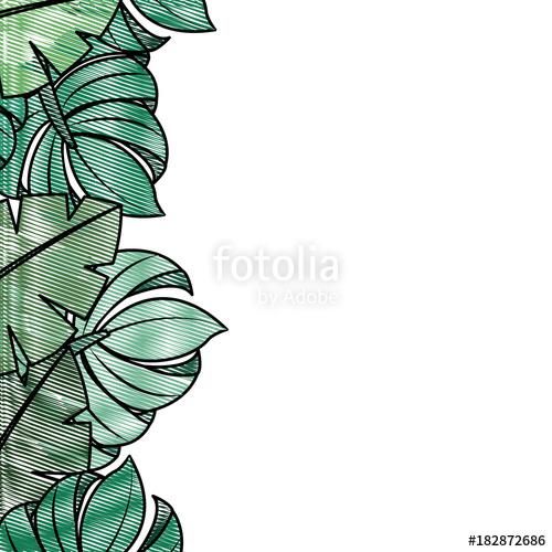 500x500 Tropical Leaves Palm Tree Border Decoration Vector Illustration