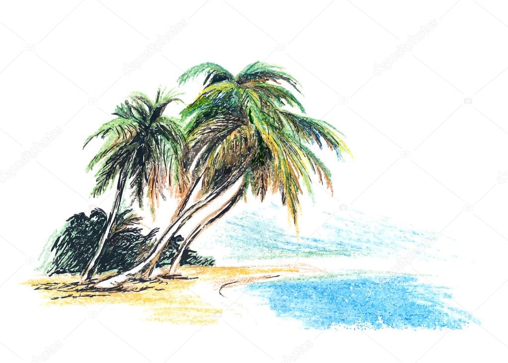 1023x731 Drawing Beach With Palm Trees Stock Vector Onot