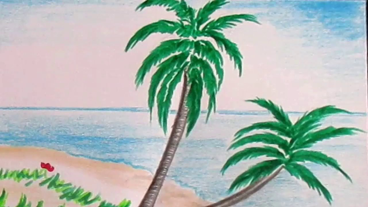 Palm Tree Beach Drawing at GetDrawings.com | Free for personal use ...