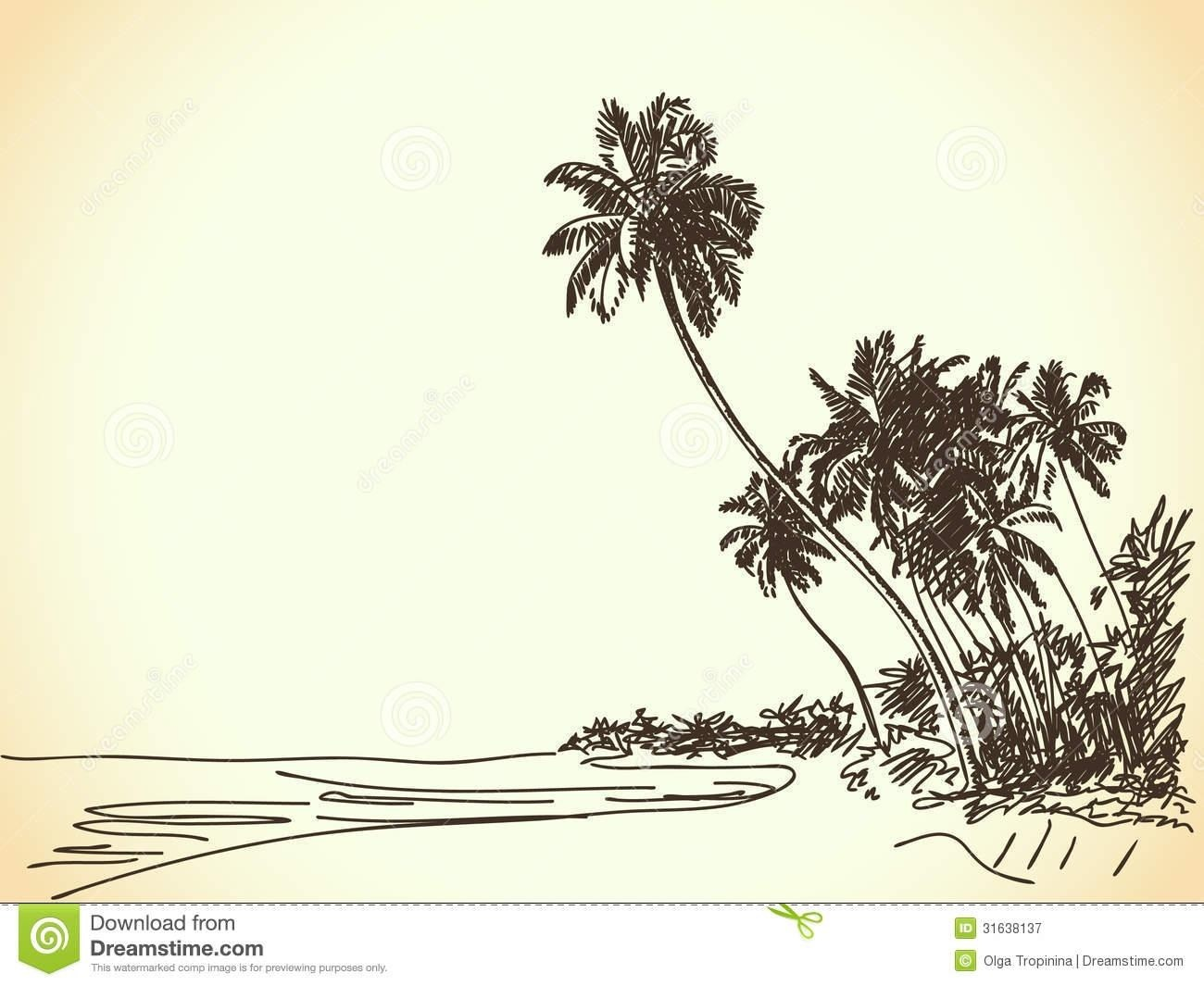 1300x1065 Palm Tree Beach Drawings Simple Living Tree In The World Places