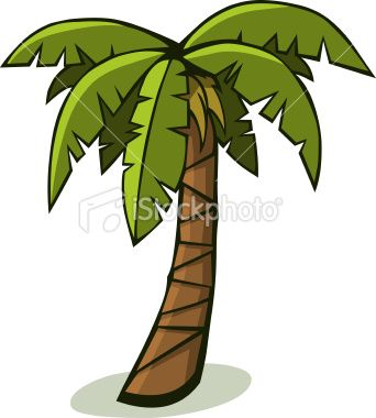 342x380 A Solitary Tropical Palm Tree. Vector Art, Art Illustrations