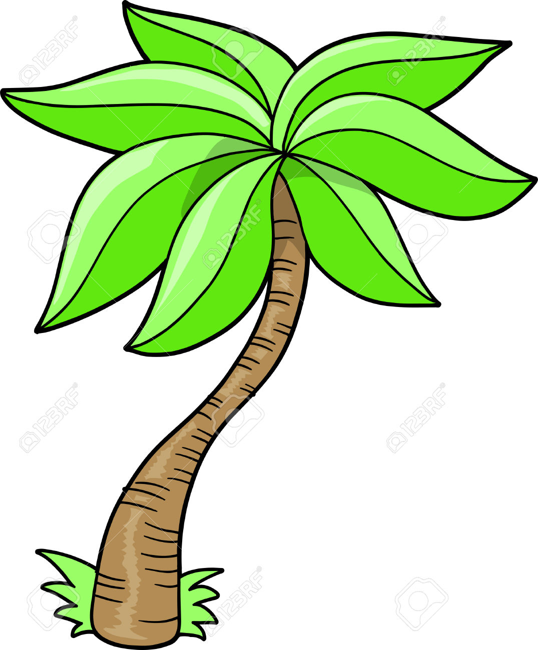 1075x1300 Palm Tree Cartoon Drawing Palm Tree Vector Illustration Royalty