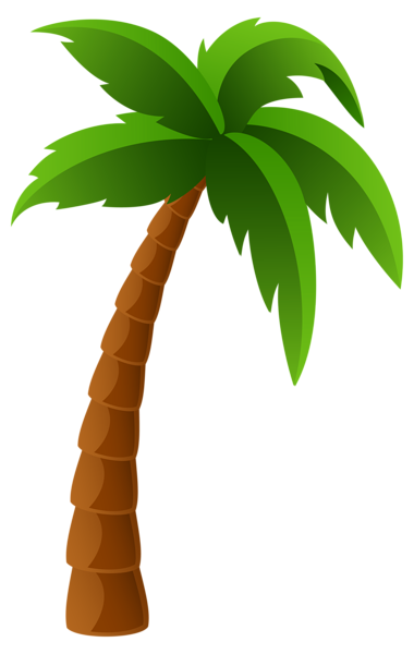 380x600 Palm Tree Png Image Clipart Graphics Palm, Moana