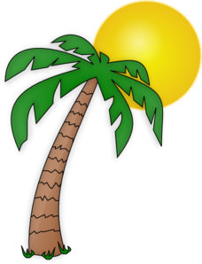 228x298 Pics For Gt Cartoon Island With Palm Tree Cartoon Drawings