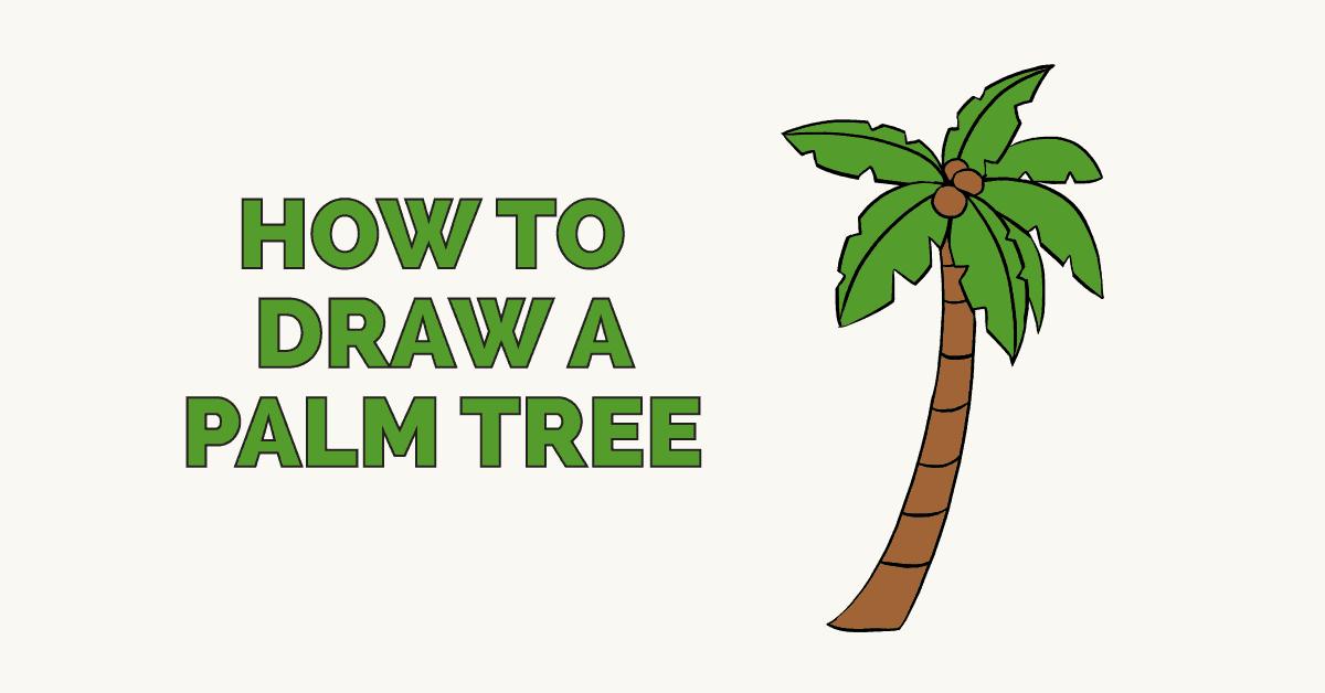 1200x628 How To Draw A Palm Tree