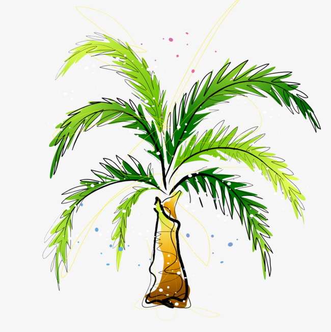 650x651 Drawing Coconut Trees, Watercolor, Coconut, Trees Png And Psd File