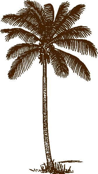 336x596 Palm Tree Clip Art