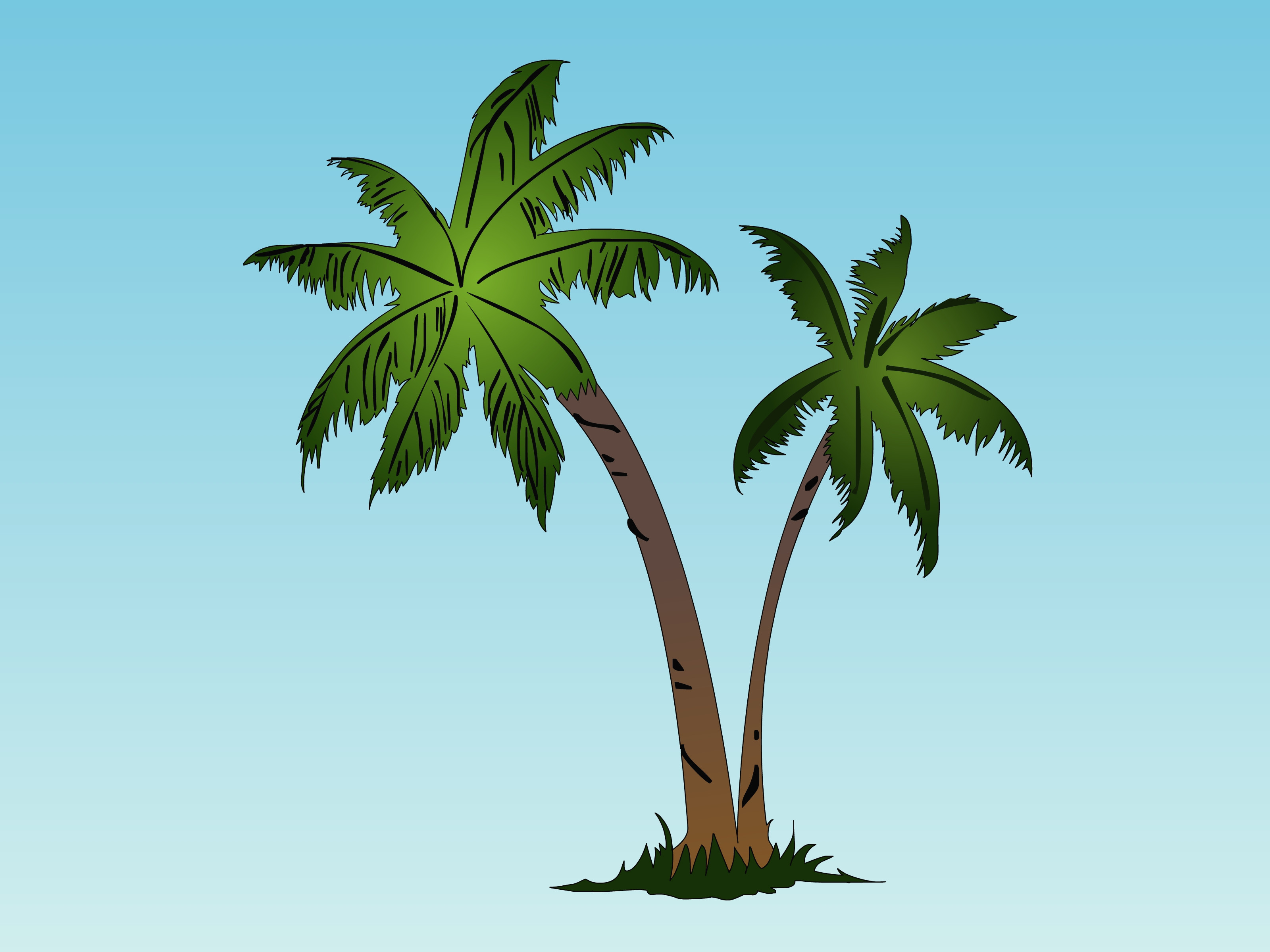 3200x2400 Coconut Tree Drawing Avec Coconut Tree Drawing How To Draw Simple