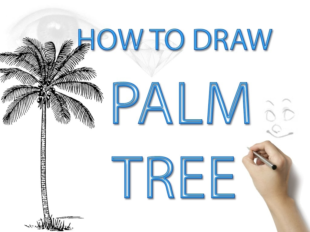 1024x768 How To Draw A Palm Tree Learn How To Draw A Palm Tree Step Step