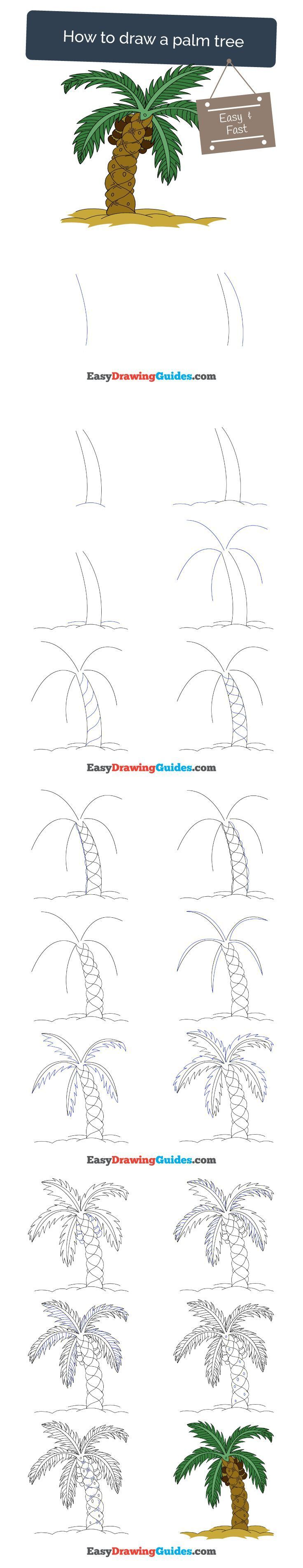736x3810 How To Draw A Palm Tree Palm, Drawings And Tutorials