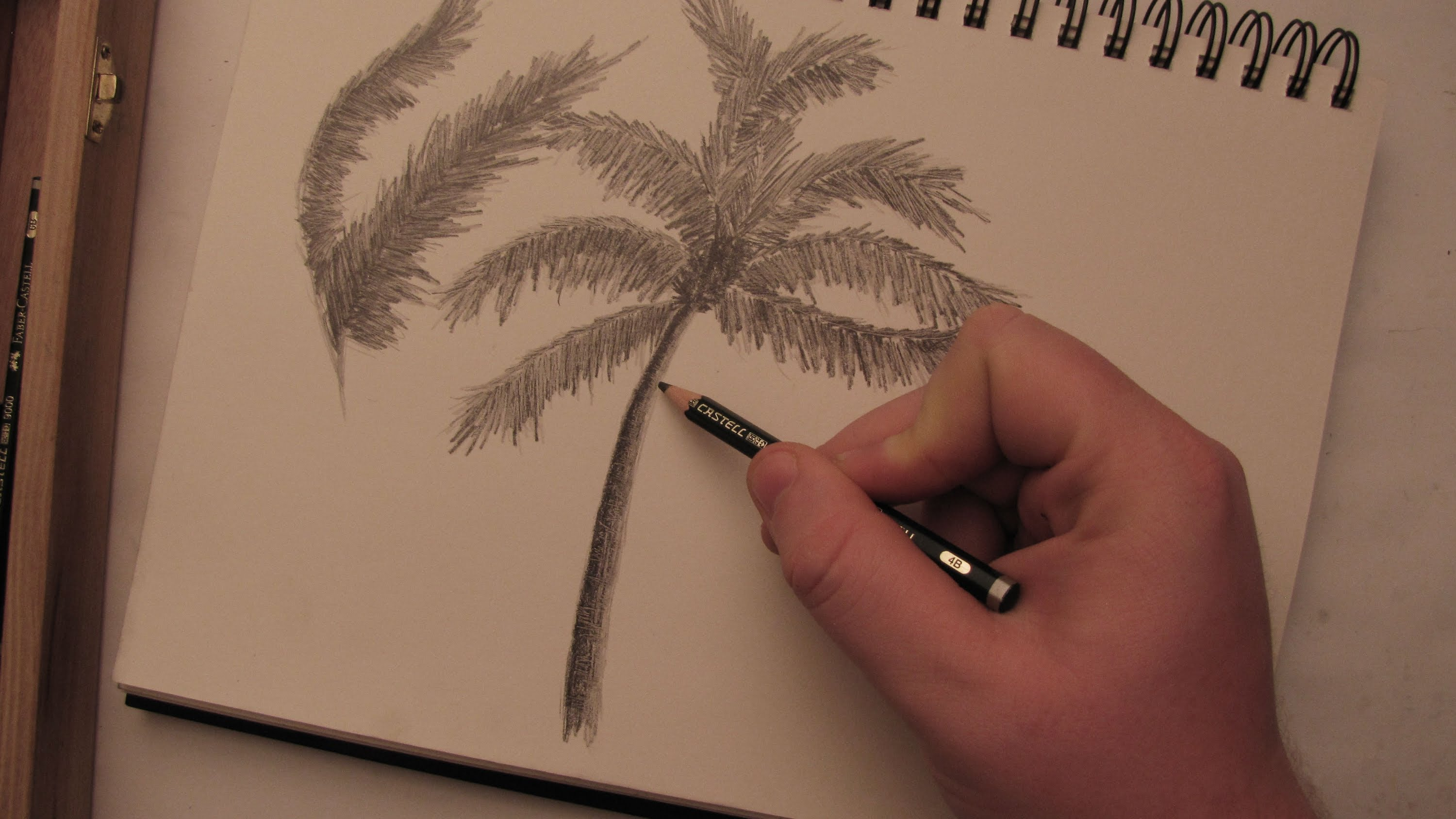 3000x1688 How To Draw A Palm Tree In Pencil