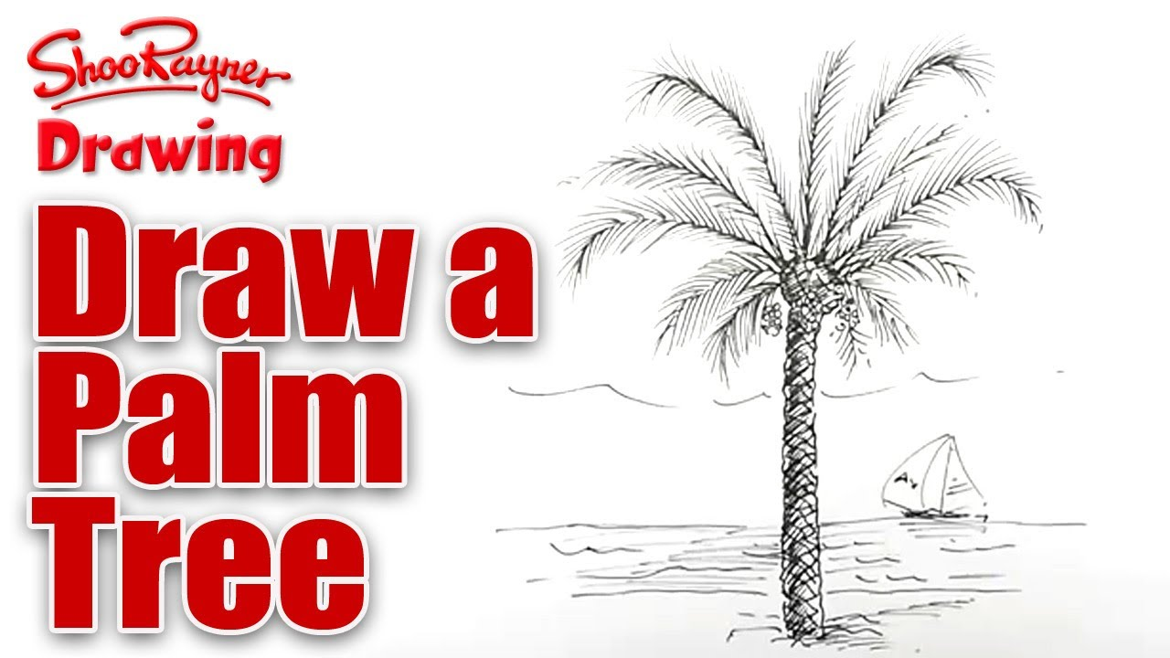 Palm Tree Drawing Step By Step at GetDrawings.com | Free for ...