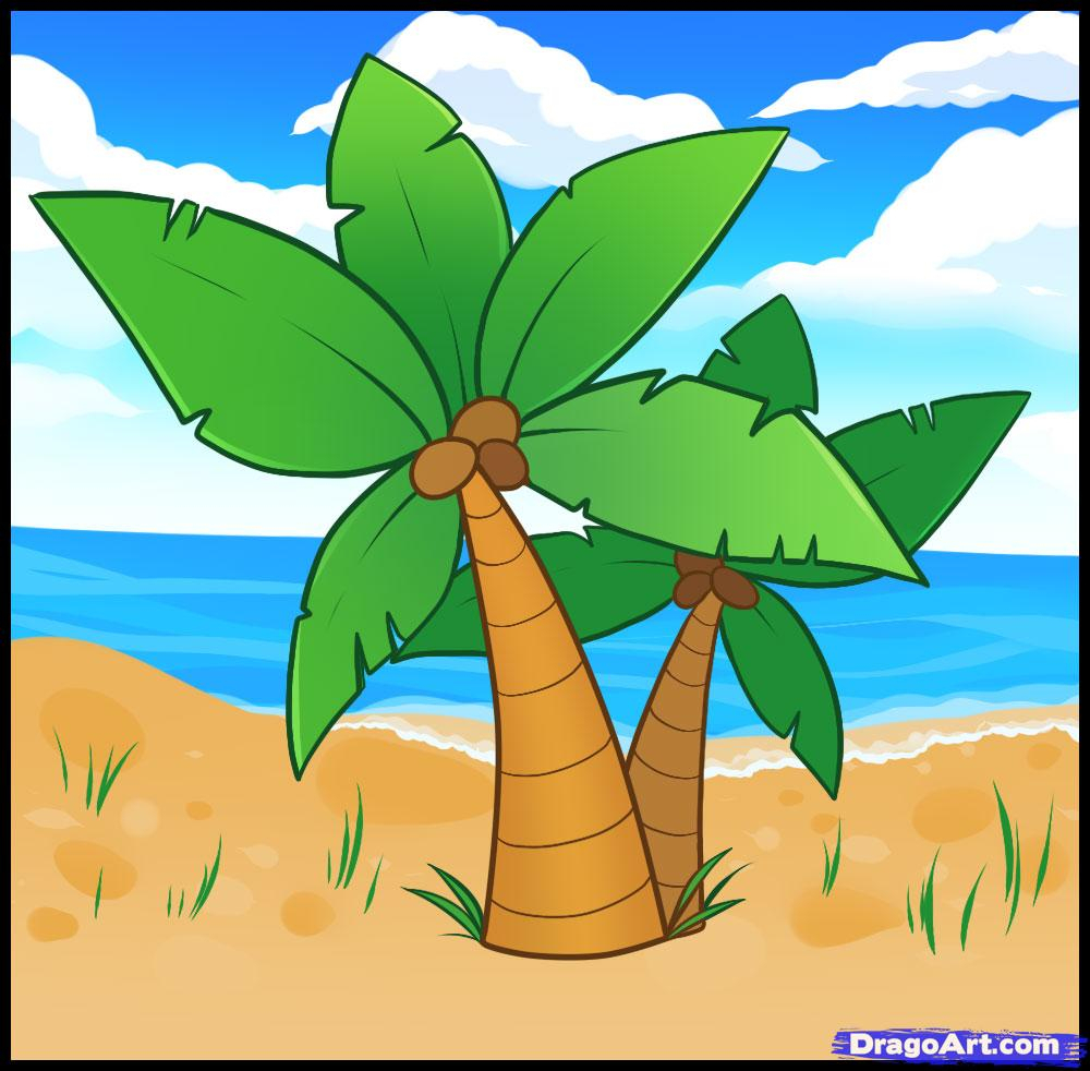 1000x982 Palm Tree Easy Drawing How To Draw Palm Trees, Step By Step, Trees