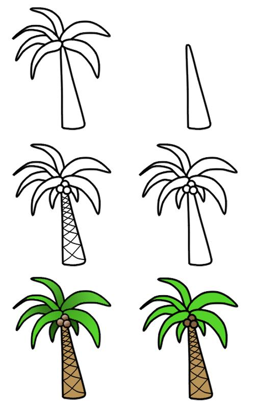 500x797 How To Draw Palm Tree For Kids. Palm Tree Easy Drawing How To Draw