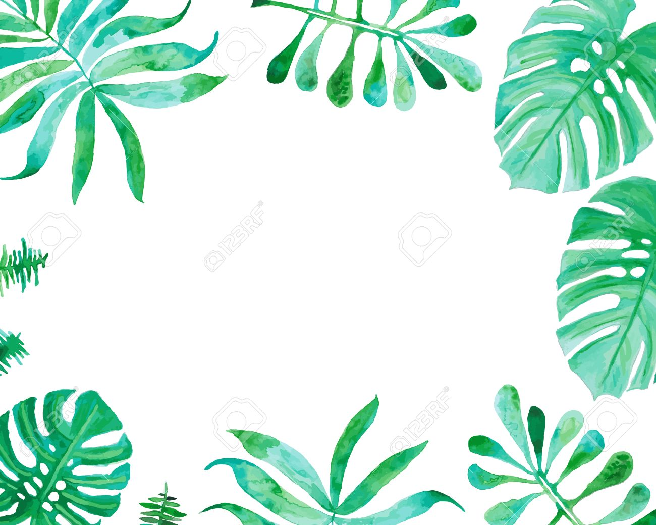 1300x1040 Watercolor Drawing, Palm Trees Or Green Leaves Royalty Free