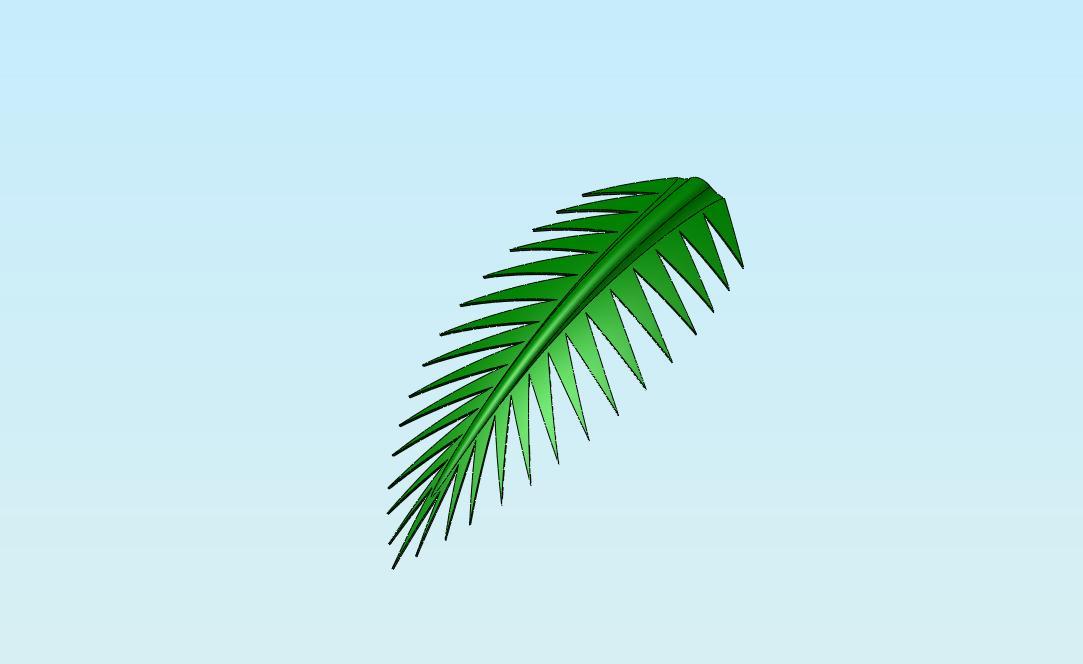 1083x664 Solidshack Palm Tree