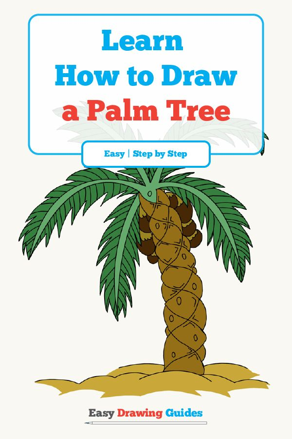 600x900 How To Draw A Palm Tree Easy And Simple Guide Trees Drawing
