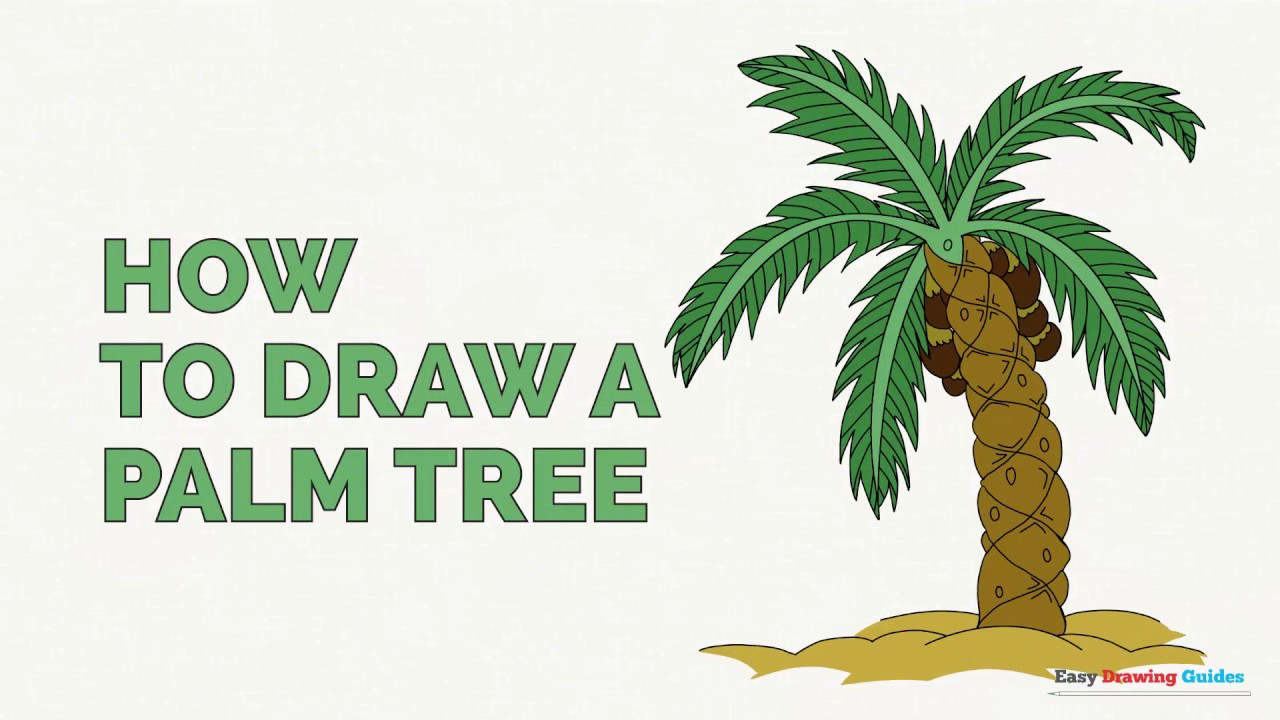 1280x720 Drawing Of A Palm Tree