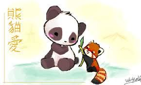 290x174 Image Result For How To Draw A Red Panda Drawing