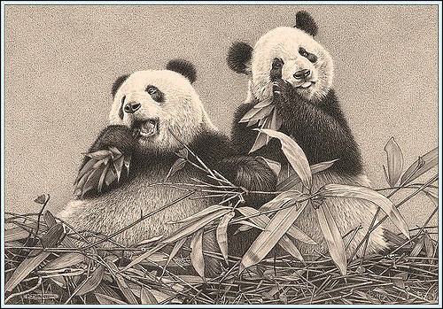 500x349 Bamboo Breakfast'