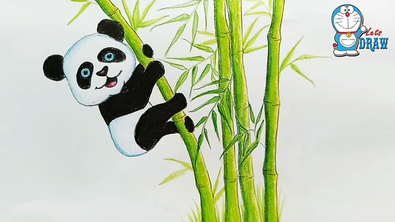 1280x720 How To Drawing Panda In Bamboo Forest Step By Step