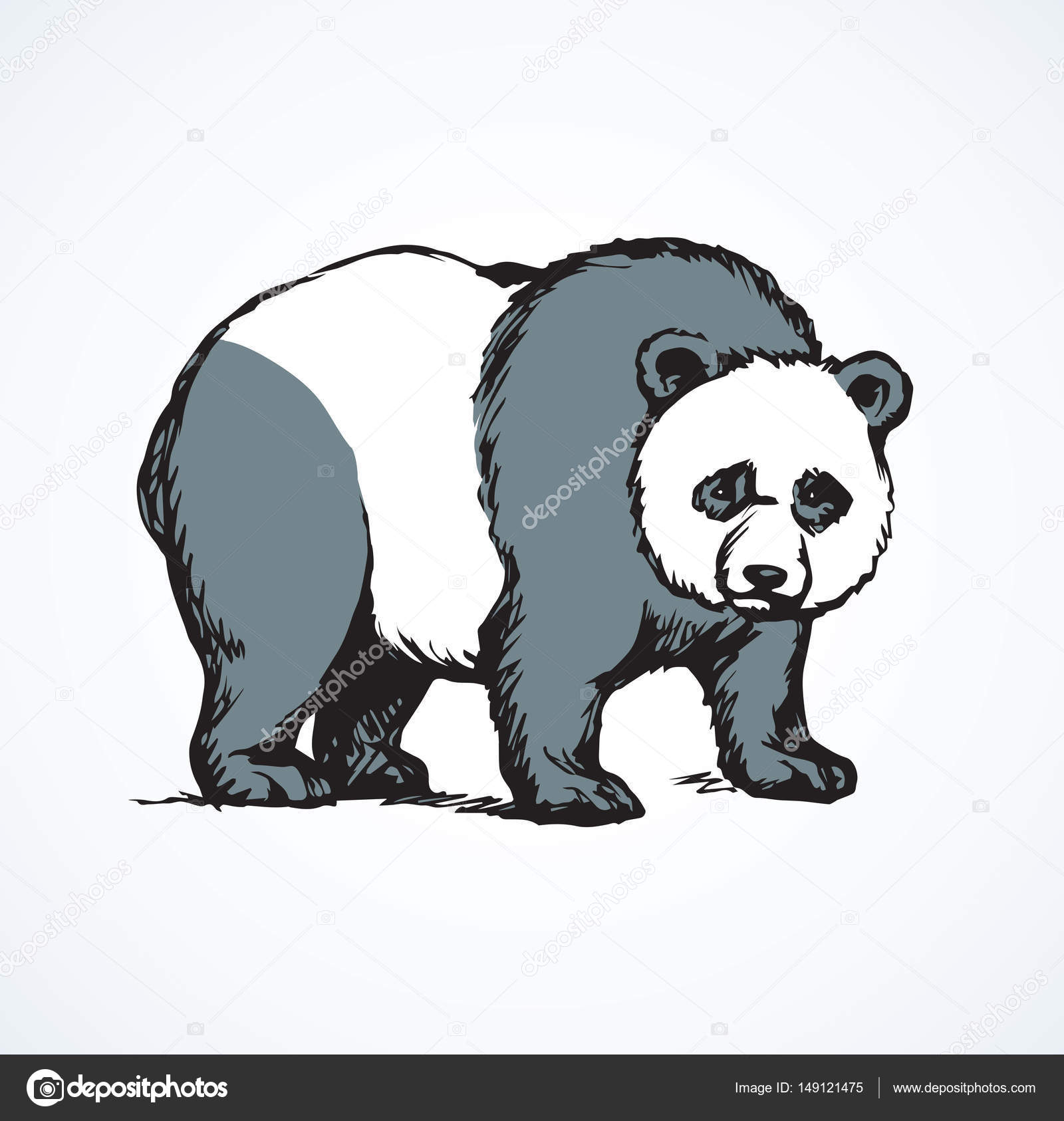 1600x1686 Panda. Vector Drawing Stock Vector Marinka