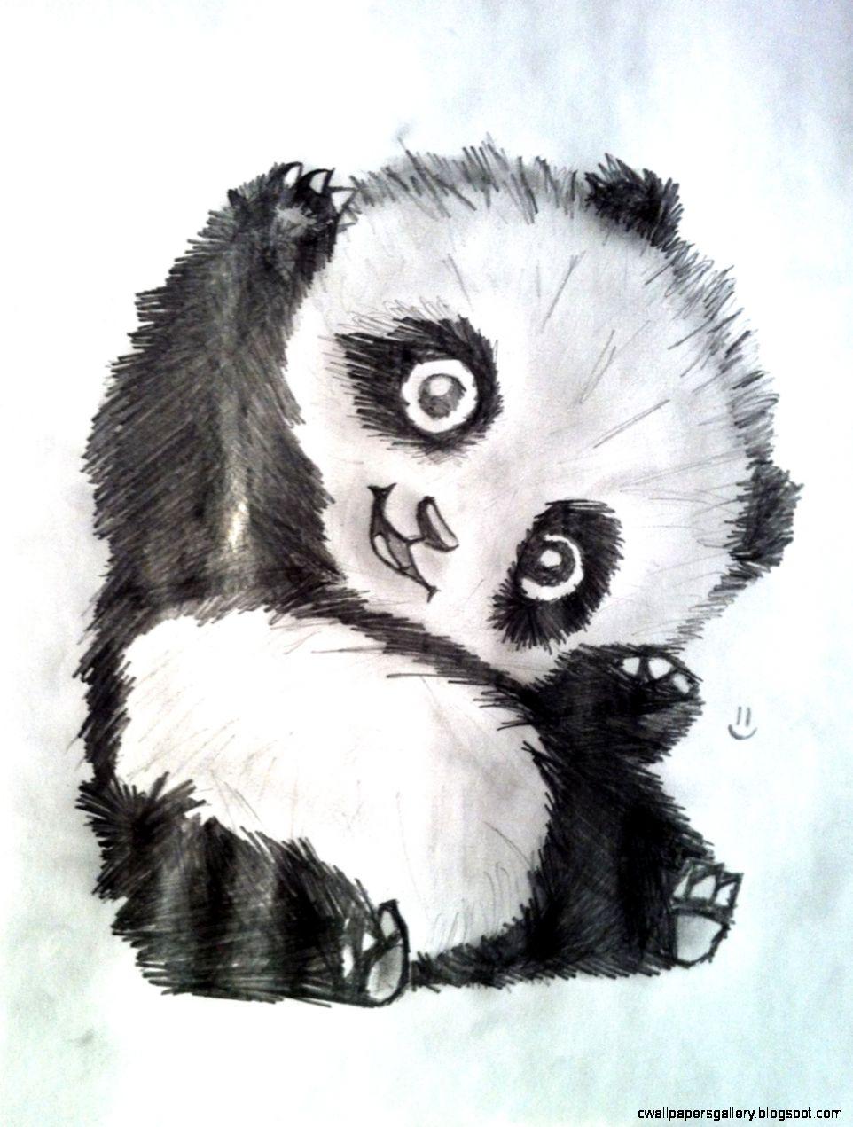962x1271 Cute Panda Drawing Tumblr Wallpapers Gallery