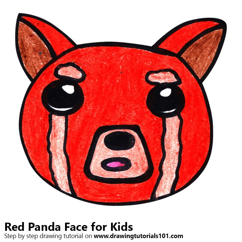 800x800 Learn How To Draw A Red Panda Face For Kids (Animal Faces For Kids