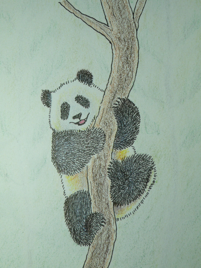 768x1024 Smiling Panda Color Pencil Drawing This Draw Is For All