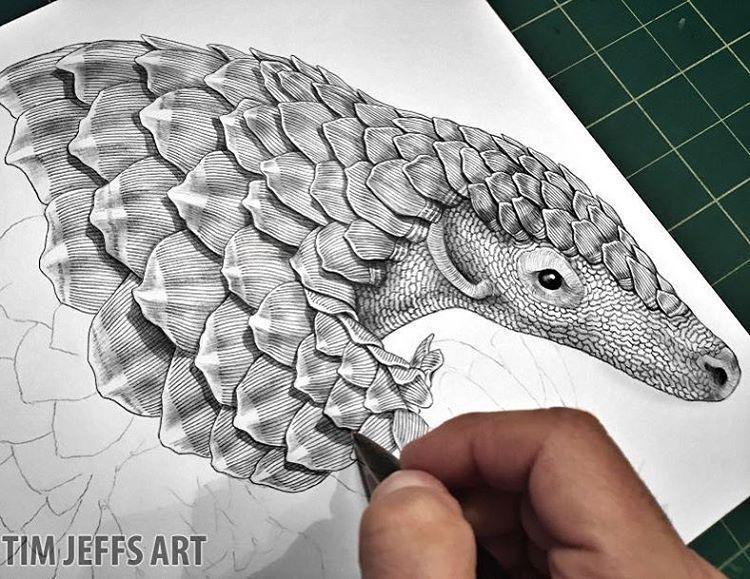 750x579 Tim Jeffs Art Pangolin Progress