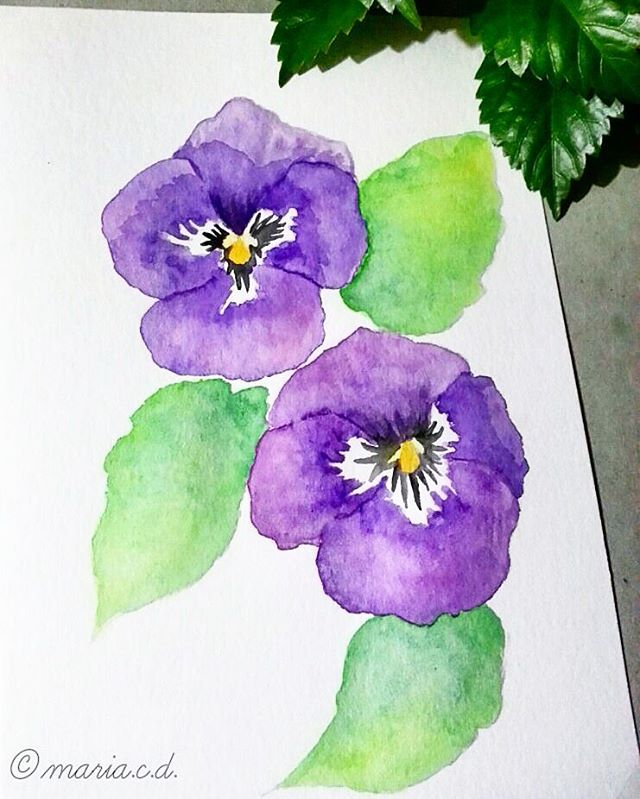 640x799 Drawing Flower From A To Z P For Pansy