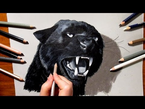 480x360 3d Pencil Drawing Roaring Black Panther