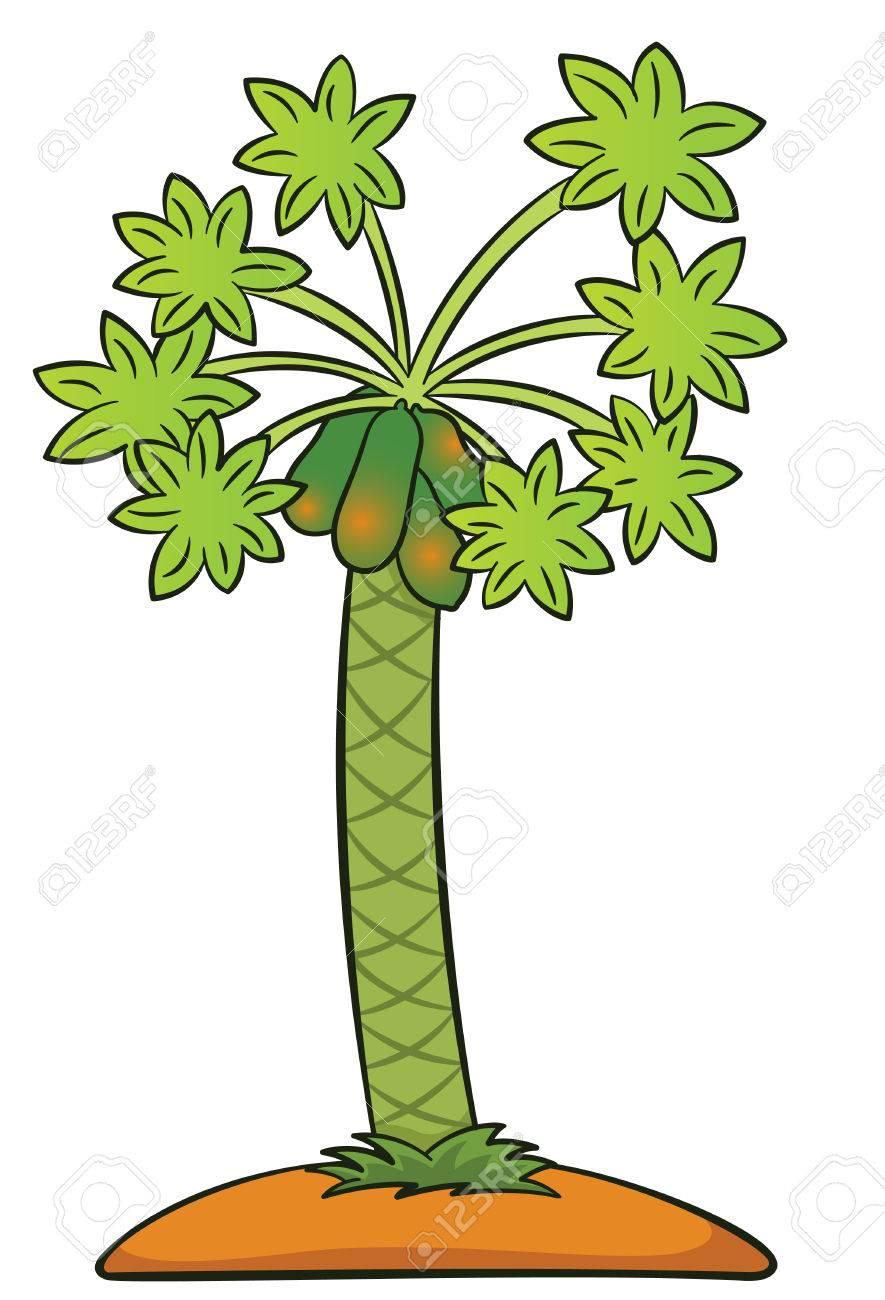 Papaya Tree Drawing at GetDrawings.com | Free for personal use ...