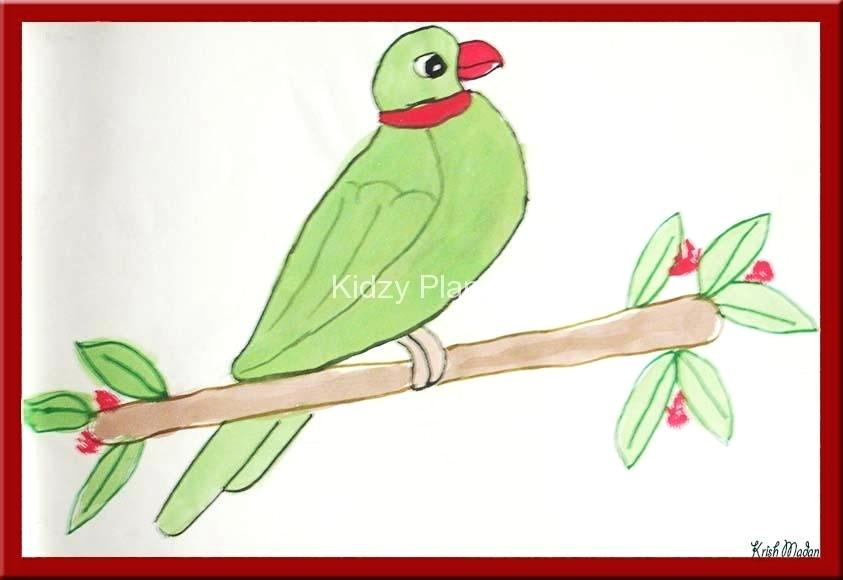 843x580 Parrot Picture To Color Coloring Page Of A Macaw Parrot Lovely