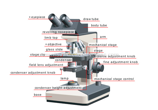 550x384 Binocular Microscope Diagram Optics Amp Binoculars