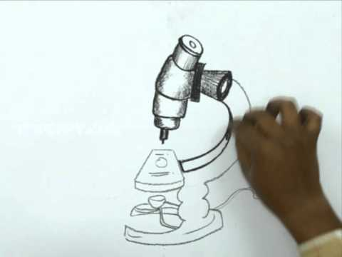 480x360 How To Draw A Microscope