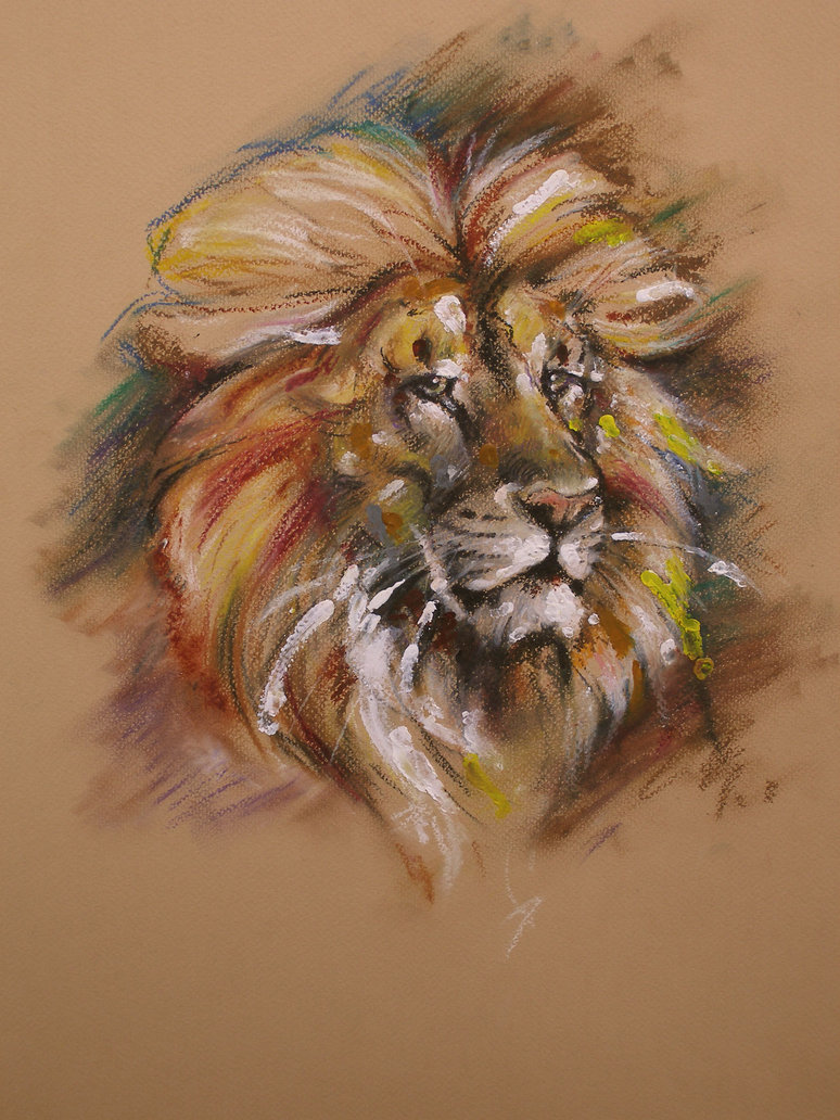 774x1032 Lion Oil Pastel By Repaul