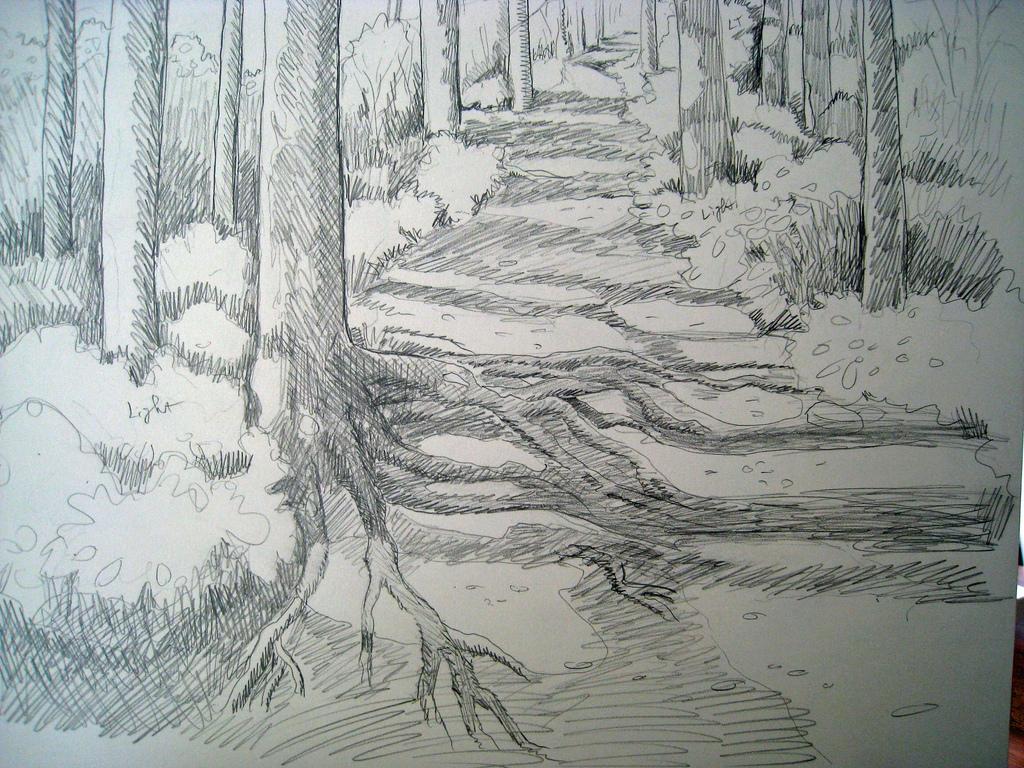 1024x768 Congden Creek Pathway Sketch Sketch For Next Week'S