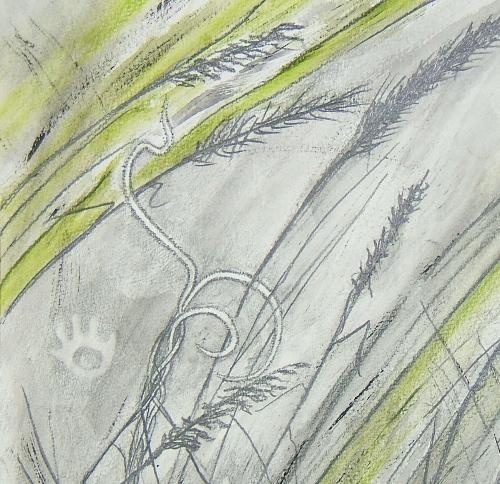 500x484 Drawing As Pathway Elizabeth Buckley Tapestry Artist