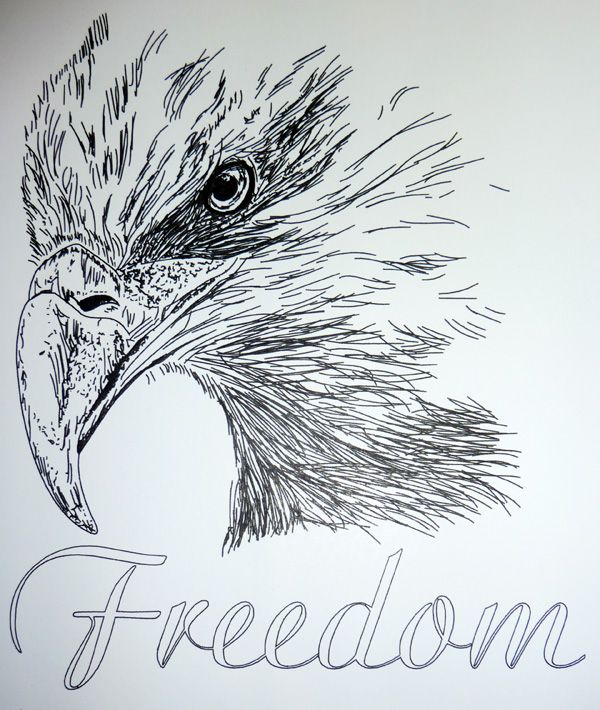 600x710 128 Best Lineart Patriotic Images On Birds, Draw