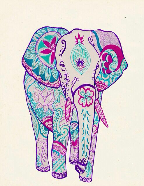 494x640 Drawn Asian Elephant Indie