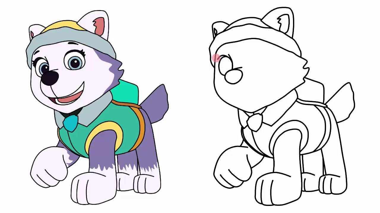 Good 1280x720 How To Draw Everest From Paw Patrol Characters Step By Step